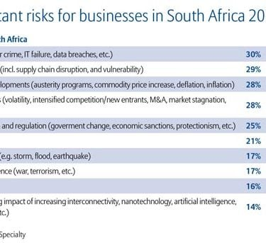 Cyber risks top concerns in South Africa
