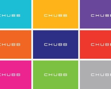 Chubb appoints powergen leader for Africa