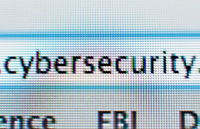 RIMS advises businesses on cyber insurance needs