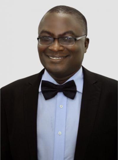 Olayinka Odutola