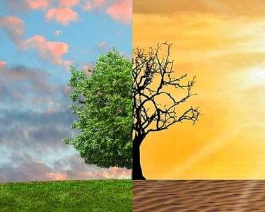 Ferma calls for EU-wide database on climate change risks