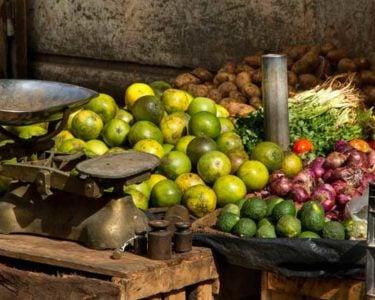 African smallholder farmers make insurance agenda