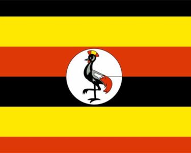 New app to give Ugandans free insurance cover