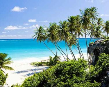 Barbados sees captive growth and OECD Global Forum recognition