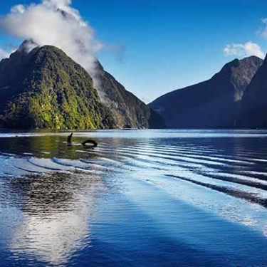 Australian agency 360 buys majority stake in NZ operation