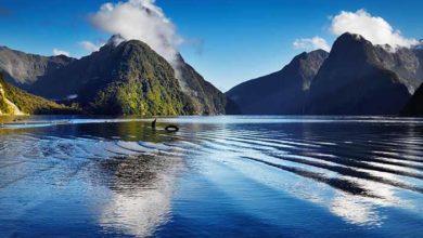 0_New-Zealand_1