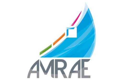 AMRAE Barometer finds risk managers still not making use of new technology