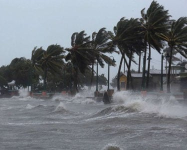 Hurricane losses set new cat record in 2017: Munich Re