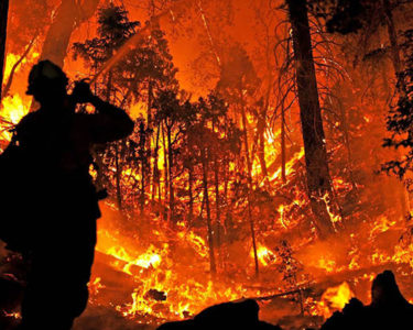 Reinsurance pricing for California wildfires could be up 70% in 2020 renewals: S&P