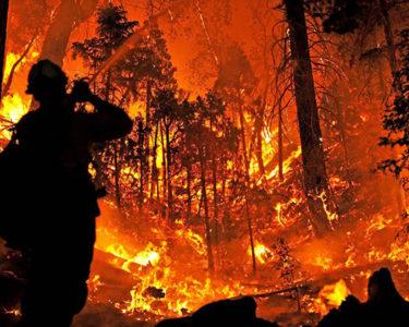 PG&E agrees $11bn insurer wildfire settlement