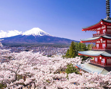 Stable outlook for non-life insurance sector in Japan and South Korea – AM Best