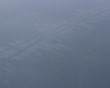 Sanchi's expanding oil slick raises environmental concerns
