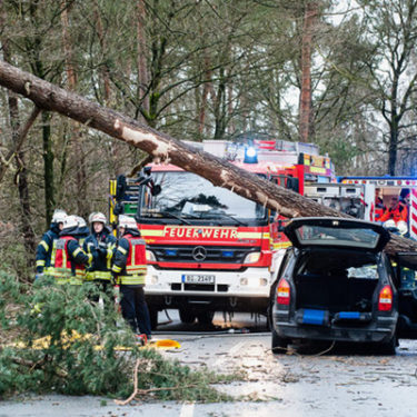 January storm losses in Europe match annual total for 2017