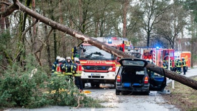 Damage caused by Storm Friederike