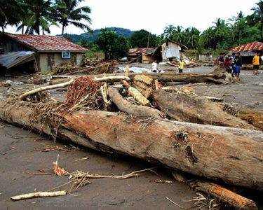 Philippines government offers farmers payout over Typhoon Tembin