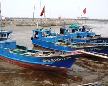 Chinese pull plug on illegal fishing in west Africa