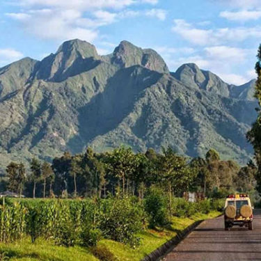 Rwandan insurers lose RWF900m on underwriting