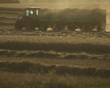 European heat and drought to cost agriculture sector billions, says Munich Re