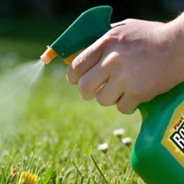 Companies warned of increased glyphosate litigation risk following Monsanto ruling