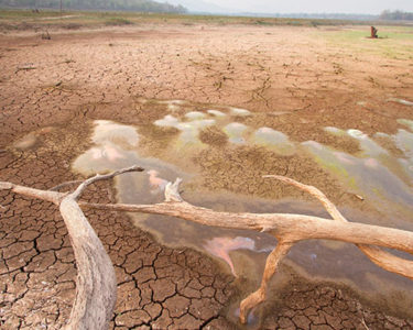 Namibian government asks for 2% levy to mitigate drought disaster risks