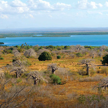 Travel threat grows in northern Mozambique