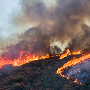 Recent California wildfire losses up to $13bn: RMS