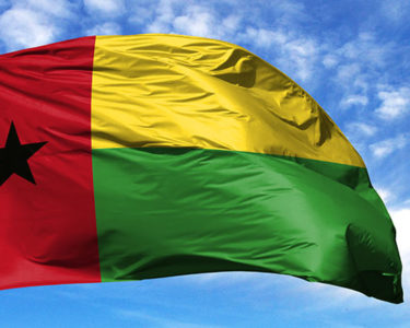 Private sector involvement key to better governance in Guinea-Bissau