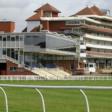 UK equine flu outbreak forces racing ban