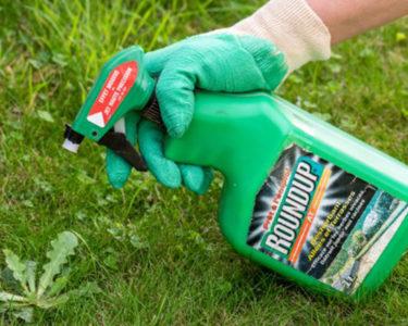 Glyphosate: a new toxic tort timebomb?