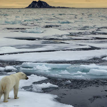 Germany, Australia and the US likely hotbeds for future climate-related litigation, says lawyer