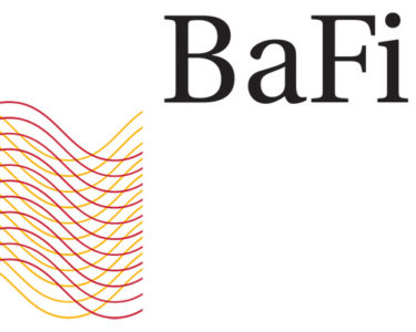 BaFin to investigate German insurers after finding problems with financial adequacy systems