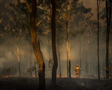 Australian insurers advise government to focus on risk prevention as bushfires rage