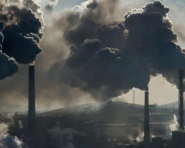 Japanese insurers under fire for still backing coal sector
