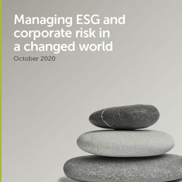 Managing ESG and corporate risk in a changed world
