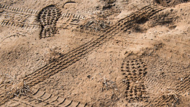 Ruts and footprints on the ground.