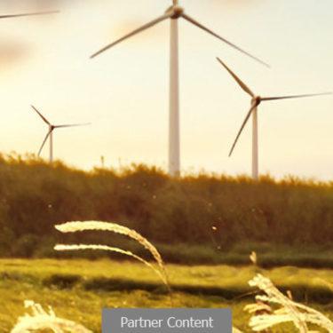 Wind: Mitigating the environmental impact