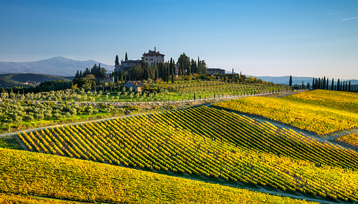 Radda in Chianti, Siena/Italy - october 2018: an autumn landscape in the Chianti region of Tuscany hills in the surroundings of Radda in Chianti