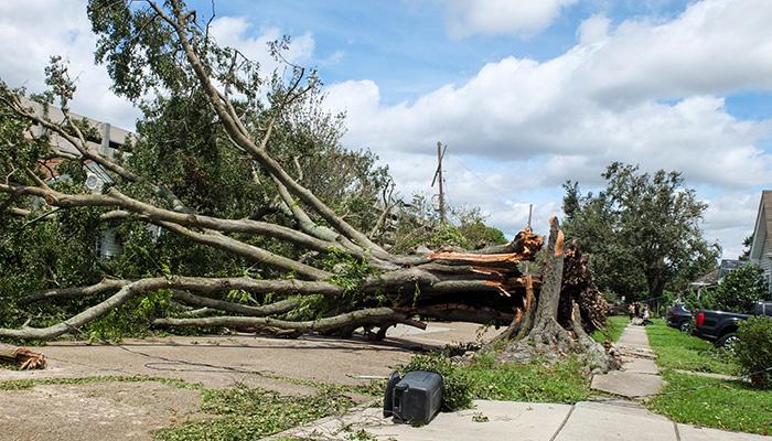 Jefferson, LouisianaU.S.A. - August 30, 2021: Storm damage from Hurricane Ida in Louisiana.