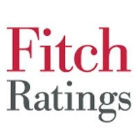 US P&C insurer outlook stable for 2011 despite difficult market conditions-Fitch