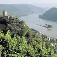Rhine spillage hits ship owners and industry